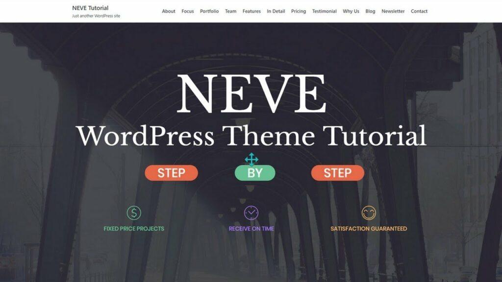 WordPress videos theme